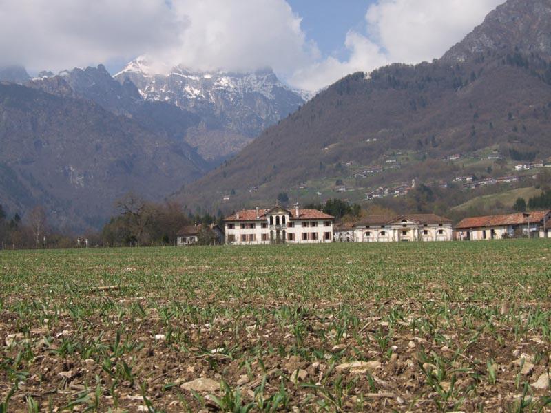 B15 - Relazioni tra agricoltura e aree naturali protette: il caso del PNDB