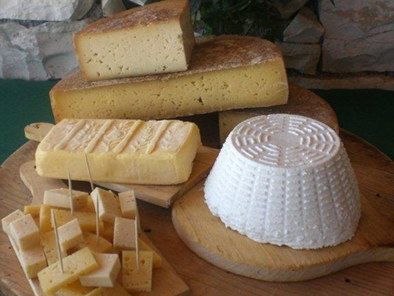 Fromage d'alpage Bellunese