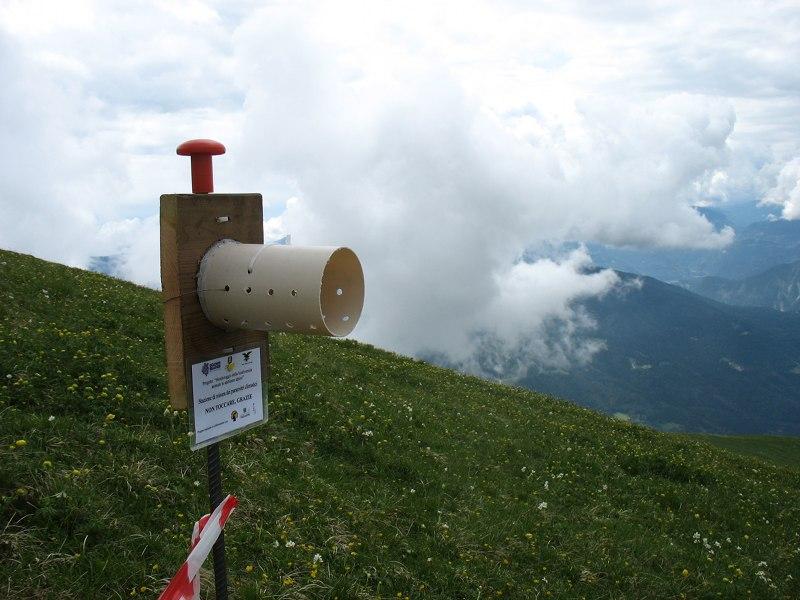 A102 - Biodiversità Alpina: Relazione finale Monitoraggio della biodiversità in ambiente alpino (2015)