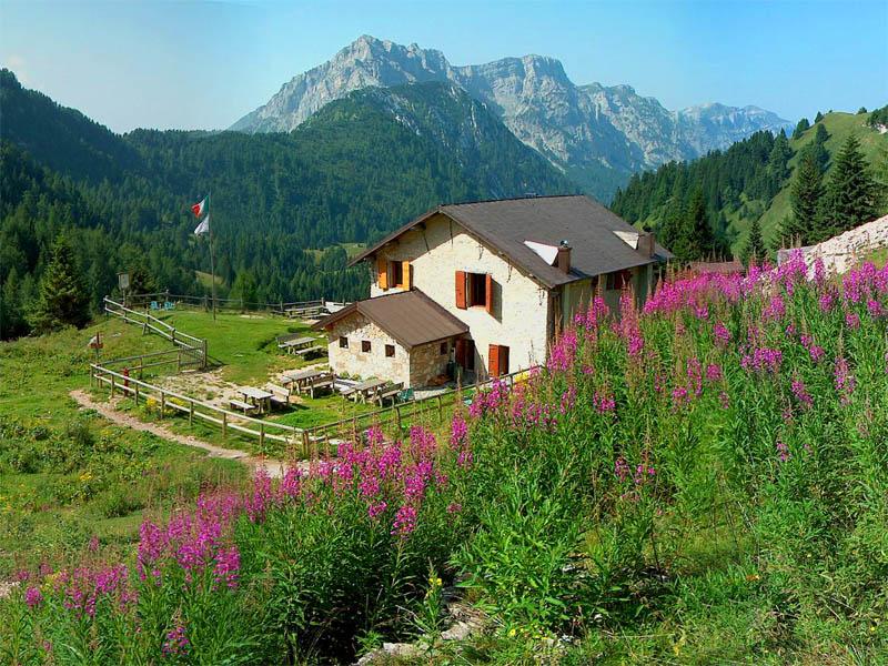 E25 - Studio ambientale delle aree di competenza dei rifugi di montagna con particolare riguardo ai rifugi Attilio Tissi e Bruno Boz