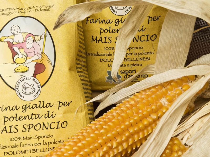 """Farine de maïs """"sponcio"""""""