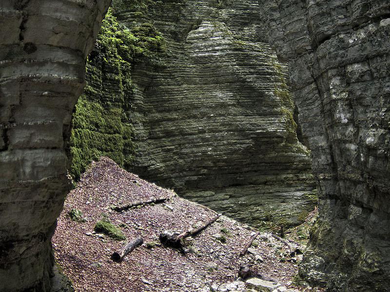 E15 - Il Parco delle dolomiti Bellunesi: aspetti geo-economici