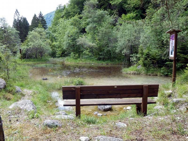 B24 - Le Unità Ambientali del Parco Nazionale Dolomiti Bellunesi