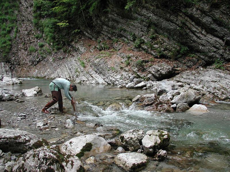 B27 - Studio di popolamenti algali presenti nelle acque correnti del territorio del PNDB 2003-2006