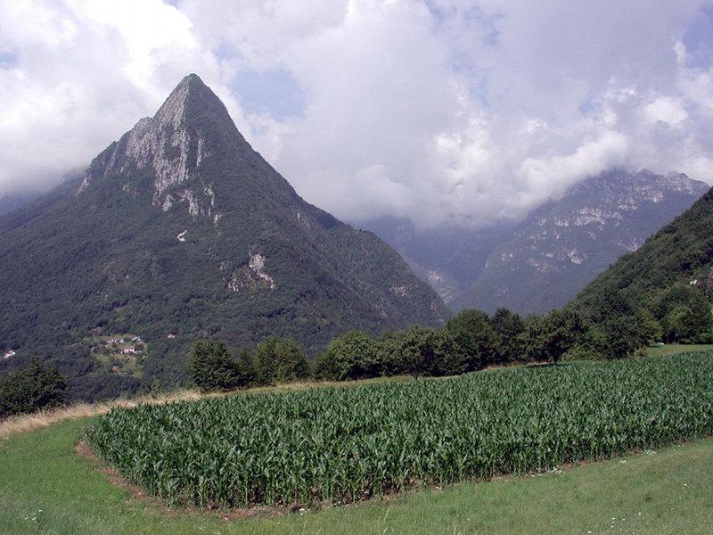 B25 - L'agricoltura nella rete ecologica nazionale