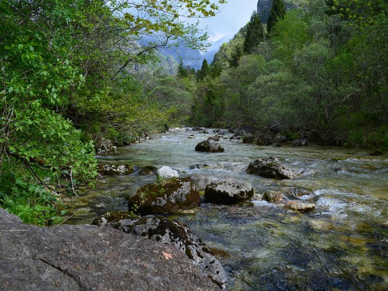 F8 - Indagine biologica effettuata in base alla L 152/2006 sul torrente Caorame