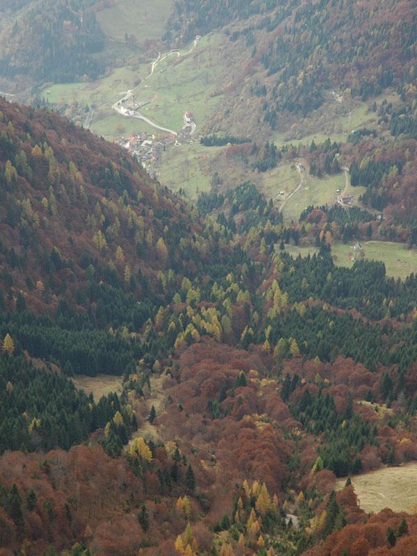D2 - Terre abbandonate e terre rappresentate: le trasformazioni del paesaggio montano nell'area di Sovramonte (BL)
