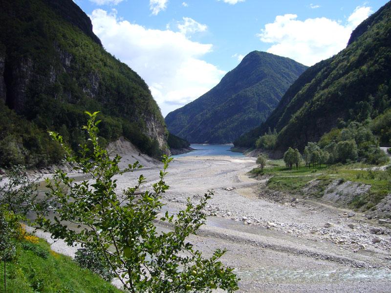 B7 - Analisi multitemporale sulla presenza di vegetazione nel basso torrente Cordévole