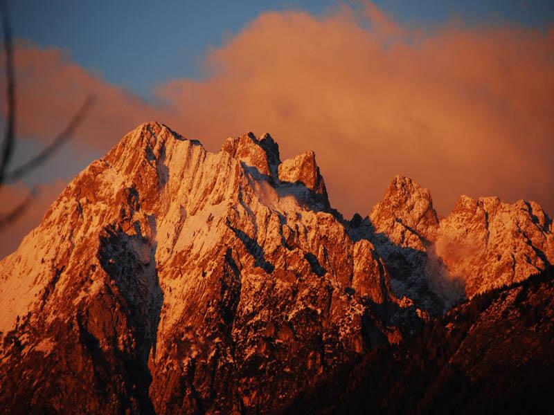 C6 - Facies di margine del Trias Medio nel Gruppo del Latemar (Dolomiti centro-occ.): analisi di facies
